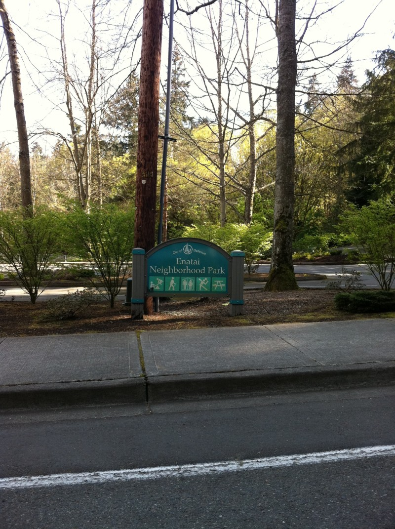 Parking Lot at Enatai Park